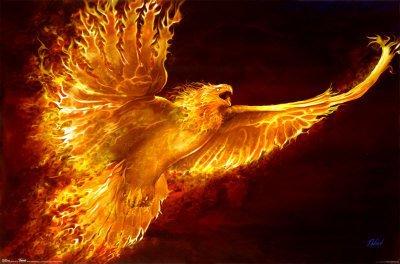 phoenixrising.jpg